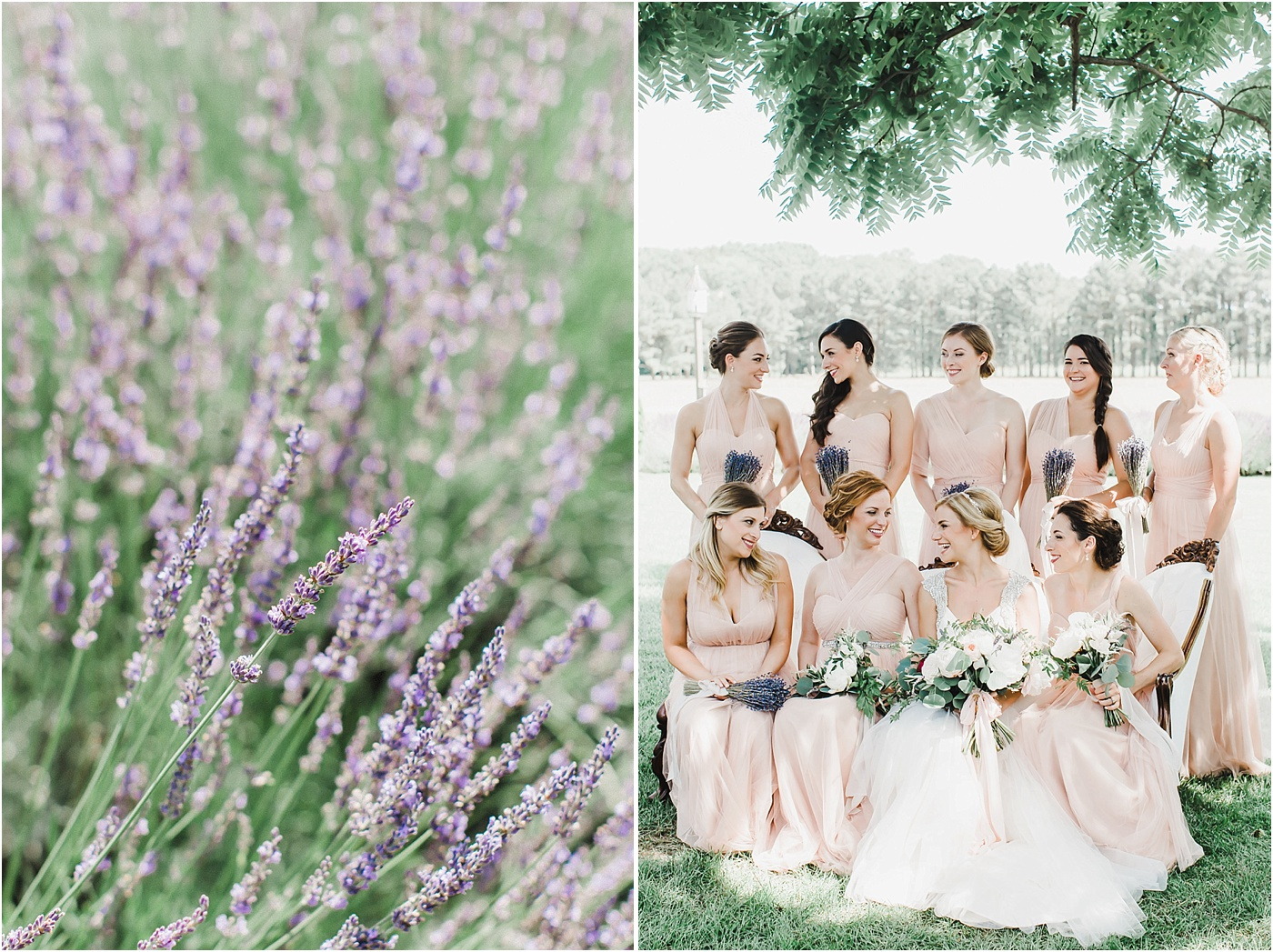 Lavender Wedding Bouquets + Blush Jenny Yoo Bridesmaid Dresses